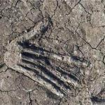 Phi thường - kỳ quặc - 16 bàn tay bị chôn vùi ở Ai Cập