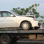 Tin tức trong ngày - Bò dạo chơi trên cao tốc, 7 ôtô đâm liên hoàn