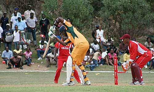 Usain Bolt chuyển sang chơi Cricket? - 1