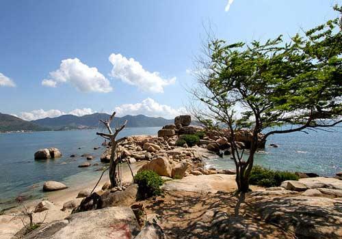 Đón gió ở Nha Trang - 1