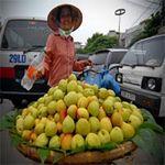 """Thị trường - Tiêu dùng - Rau quả Trung Quốc giá... """"trên trời"""""""