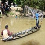 """Tin tức trong ngày - Cả trăm người tìm bắt cá """"lạ"""" cắn người"""
