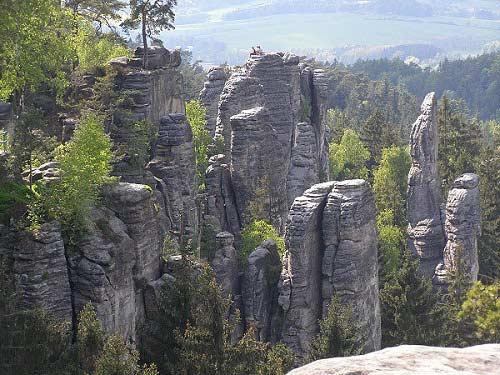 Thiên đường ẩn trong cánh rừng già ở CH Séc - 6