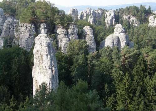 Thiên đường ẩn trong cánh rừng già ở CH Séc - 7