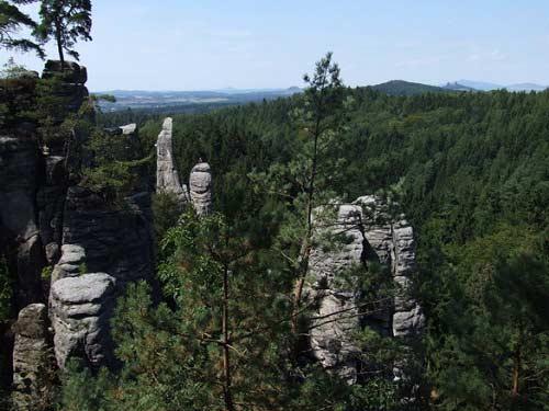 Thiên đường ẩn trong cánh rừng già ở CH Séc - 12