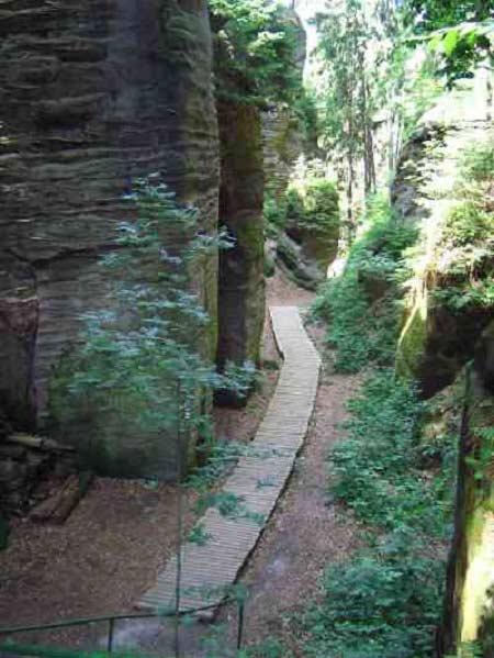 Thiên đường ẩn trong cánh rừng già ở CH Séc - 13