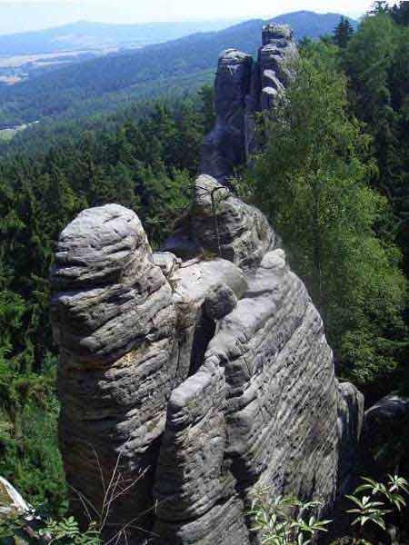 Thiên đường ẩn trong cánh rừng già ở CH Séc - 14
