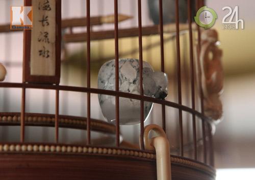 Lồng chim tiền tỉ của đại gia Việt - 1