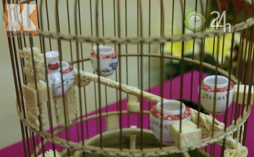 Lồng chim tiền tỉ của đại gia Việt - 3