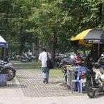 Tin tức trong ngày - Xén công viên làm bãi đỗ xe: Đừng vội vàng!