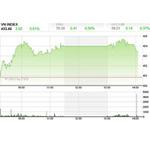 Tài chính - Bất động sản - Nhận định TTCK tuần từ 20-24/8