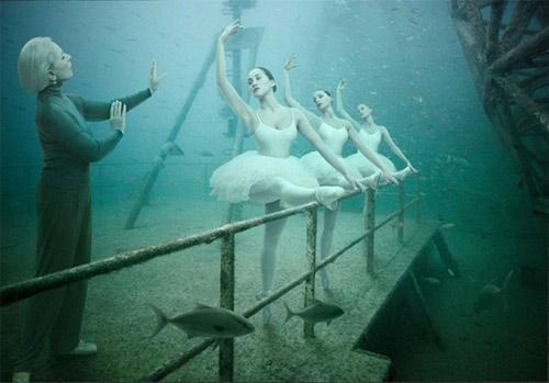 Kinh ngạc triển lãm dưới nước - 6
