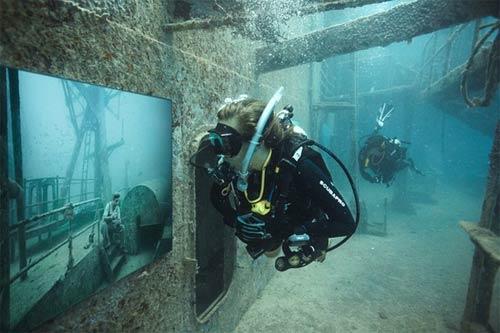 Kinh ngạc triển lãm dưới nước - 11