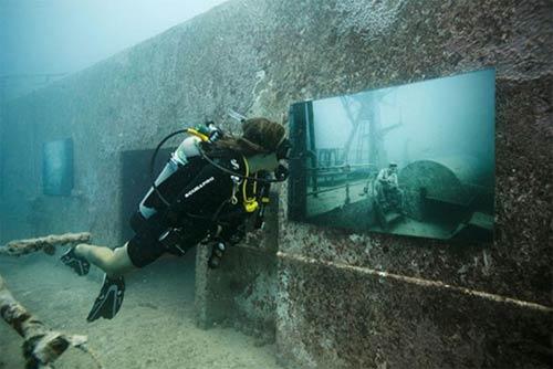 Kinh ngạc triển lãm dưới nước - 9