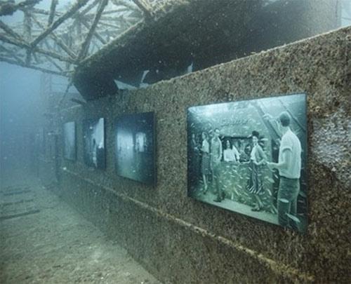 Kinh ngạc triển lãm dưới nước - 15