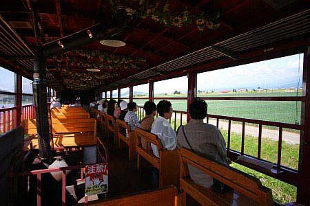Ngây ngất Hokkaido mùa hoa oải hương - 2