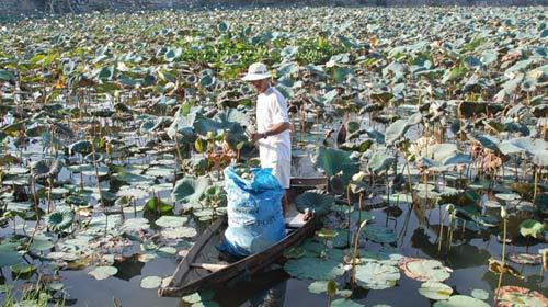 Cú sốc dioxin ở Đà Nẵng - 1