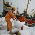 Thị trường - Tiêu dùng - Giá gạo xuất khẩu của VN bắt đầu giảm