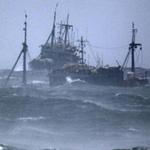 Tin tức trong ngày - 28 ngư dân TQ mất tích tại Hàn Quốc