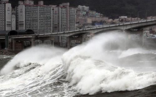 Chùm ảnh bão Bolaven tàn phá Hàn Quốc - 3