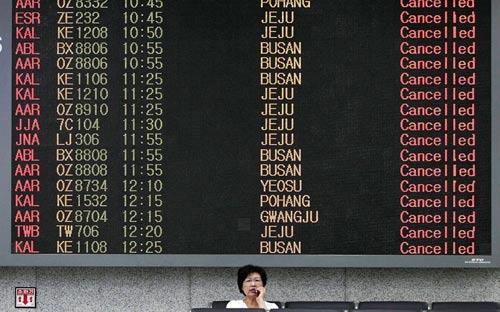 Chùm ảnh bão Bolaven tàn phá Hàn Quốc - 6
