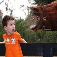 Video cười: Chết cười mất thôi - 7