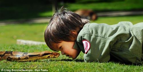 Cậu bé 2 tuổi chơi với trăn và cá sấu - 1