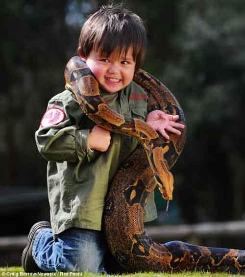 Cậu bé 2 tuổi chơi với trăn và cá sấu - 3