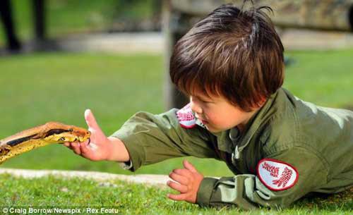 Cậu bé 2 tuổi chơi với trăn và cá sấu - 8