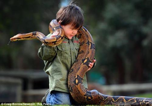 Cậu bé 2 tuổi chơi với trăn và cá sấu - 4