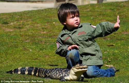 Cậu bé 2 tuổi chơi với trăn và cá sấu - 5