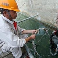 Giả thiết về trận động đất ở Quảng Nam