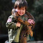 Phi thường - kỳ quặc - Cậu bé 2 tuổi chơi với trăn và cá sấu