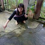 Tin tức trong ngày - Quảng Nam: Động đất 5 lần trong đêm