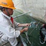 Tin tức trong ngày - Giả thiết về trận động đất ở Quảng Nam