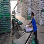 Thị trường - Tiêu dùng - Xuất khẩu gạo sang TQ phải thận trọng