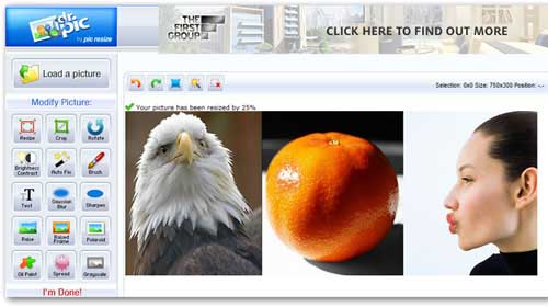 Top 12 sites giúp thay thế ứng dụng Photoshop - 10