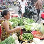Thị trường - Tiêu dùng - Chọn rau sạch kiểu may rủi
