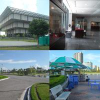 Bảo tàng, công viên tiền tỉ... ế khách
