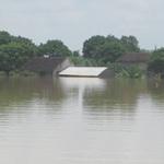 Tin tức trong ngày - Đê vỡ bất ngờ, nhấn chìm cả trăm nhà dân