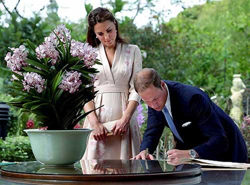 Công nương Kate Middleton lần đầu tới châu Á - 1
