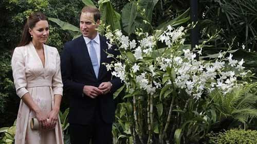 Công nương Kate Middleton lần đầu tới châu Á - 2