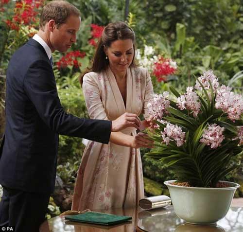 Công nương Kate Middleton lần đầu tới châu Á - 6