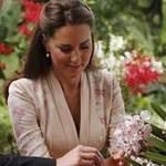 Tin tức trong ngày - Công nương Kate Middleton lần đầu tới châu Á