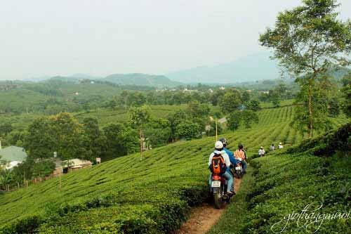 Khám phá nét đẹp làng quê ở Phú Thọ - 4