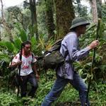 Tin tức trong ngày - Đường chữ qua rừng đói