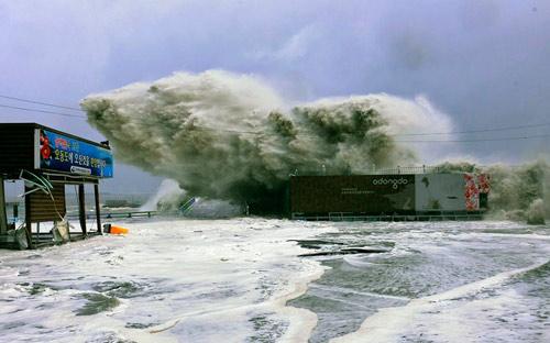 Hình ảnh về sức tàn phá dữ dội của bão Sanba - 1