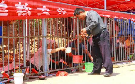 Trung Quốc: Gom ăn mày vào lồng sắt - 3