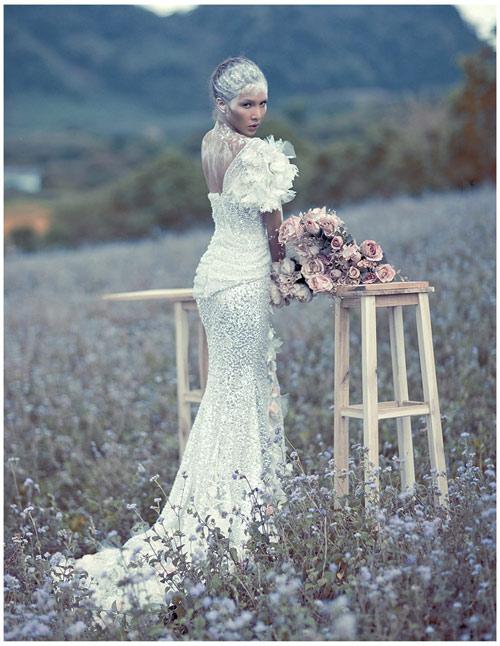 Mỹ nhân Việt đọ sắc cùng váy cưới - 1