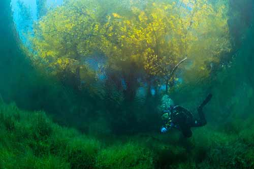 Bí ẩn dưới đáy hồ nước xanh ngắt kì ảo - 3